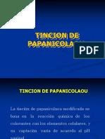 tincionpapanicolau-1111111.pdf