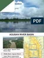 The Agusan Marsh