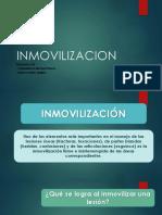 inmovilizacion-2018