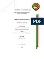 practica-de-analisis-decrecimiento.docx