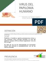 virusdelpapiloma-170122035230