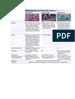 resumen                                                                                 cartilago                                                                                 histologia