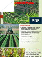 presentaci             ó             n1.1                           agricultura