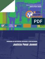 ley         de         justicia         penal         juvenil         y         otras         leyes         conexas