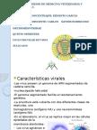 orthomixoviridae