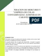 RECUPERACION-DE-MERCURIO.pptx