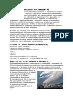 Contaminacion.docx