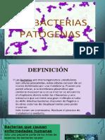 diapositivas abcterias.pptx
