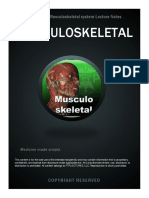 Musculoskeletal System Notes v2