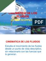Cinematica de Los Fluidos Junio 2010