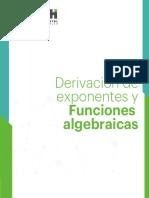 EJEMPLO 8 Derivacion de Exponentes y Funciones Algebraicas (1)