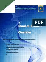 daniel carrion.docx