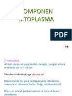 KOMPONEN SITOPLASMA-1b