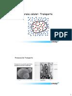 4bMembranaTransporte.pdf