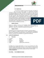 325556909-Memoria-Descriptiva-Puente-Cochalan.pdf