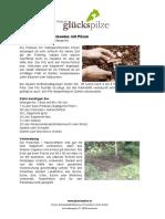 Pilzbeet.pdf