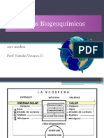 Ciclos Biogeoquímicos NM1