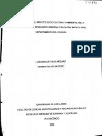 EVALUACIÓN DEL  IMPACTO SOCIO CULTURAL Y AMBIENTAL DE LA GANADERÍA EN EL RESGUARDO INDÍGENA CHOLOLOBO MATATU DEPARTAMENTO DEL VICHADA