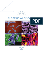 Clostridial Diseases