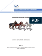 Manual_Anatomia_Veterinaria_UCSUR-2017.pdf