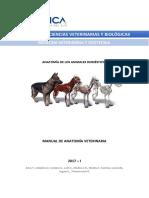 Manual_Anatomia_Veterinaria_UCSUR-2017.pdf