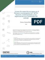 Remocion en masa tesis.pdf
