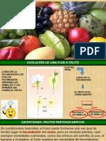 Biología Vegetal El Fruto PPT