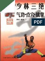 hard qi qong kung fu