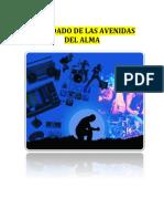 cuidadoavenidasalma.pdf