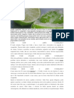 Limão congelado.docx