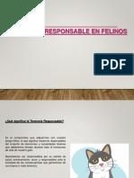 Tenencia Responsable en Felinos