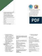 triptico de redaccion de nota tecnica.docx