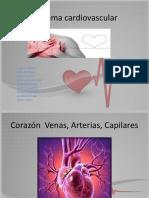 Sistema Cardiovascular Power Point Farmacocinetica