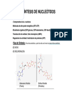 sintesis de nucleotidos