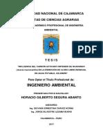 """""""Influencia Del Carbón Activado Obtenido de Huarango"""