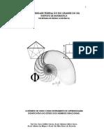 Differential Equations in Appli - V. v. Amelkin
