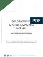 EXPLORACION-DE-GLANDULA-MAMARIA-NORMAL.pdf