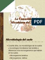 La Comunidad Microbiana Del Suelo