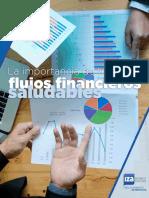 FLUJOS FINANCIEROS SALUDABLES