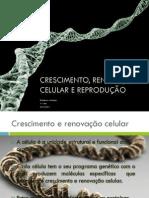 (1) Crescimento, renovação celular e reprodução
