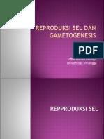 22206_26171_4 Reproduksi Sel Dan Gametogenesis