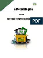 Guia Metodologica Taller de Desarrollo de Habilidades Instrumentales Psicologia Del Aprendizaje Preescolar