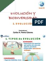BIOLOGÍA MOLECULAR - ENZIMAS