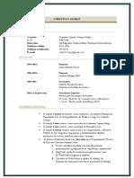 Curriculum (Actualizado 2017)