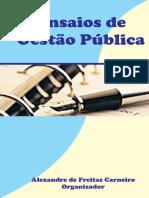 Ensaios de Gestão Publica