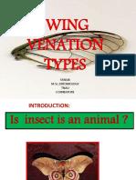 Wingtypesandvenation 141024170926 Conversion Gate02