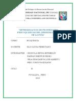 """Trabajo de investigacion DETERMINACION DE PROPIEDADES FISICOQUIMICAS DEL DESHIDRATADO DE LA PIÑA"""""""