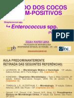 [Aula 11 Microbiologia Básica - Profª. Zilka] Enterococcus spp. (Cocos Gram-positivos)