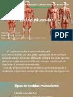 Tecido Muscular Final