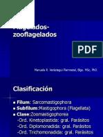 Giardia Lamblia (11)